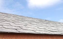 18- Vista general de un ala del tejado y su unión (inapreciable) con la casa contigüa.