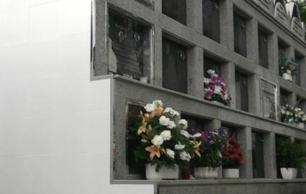 Reparación y protección de nichos.
